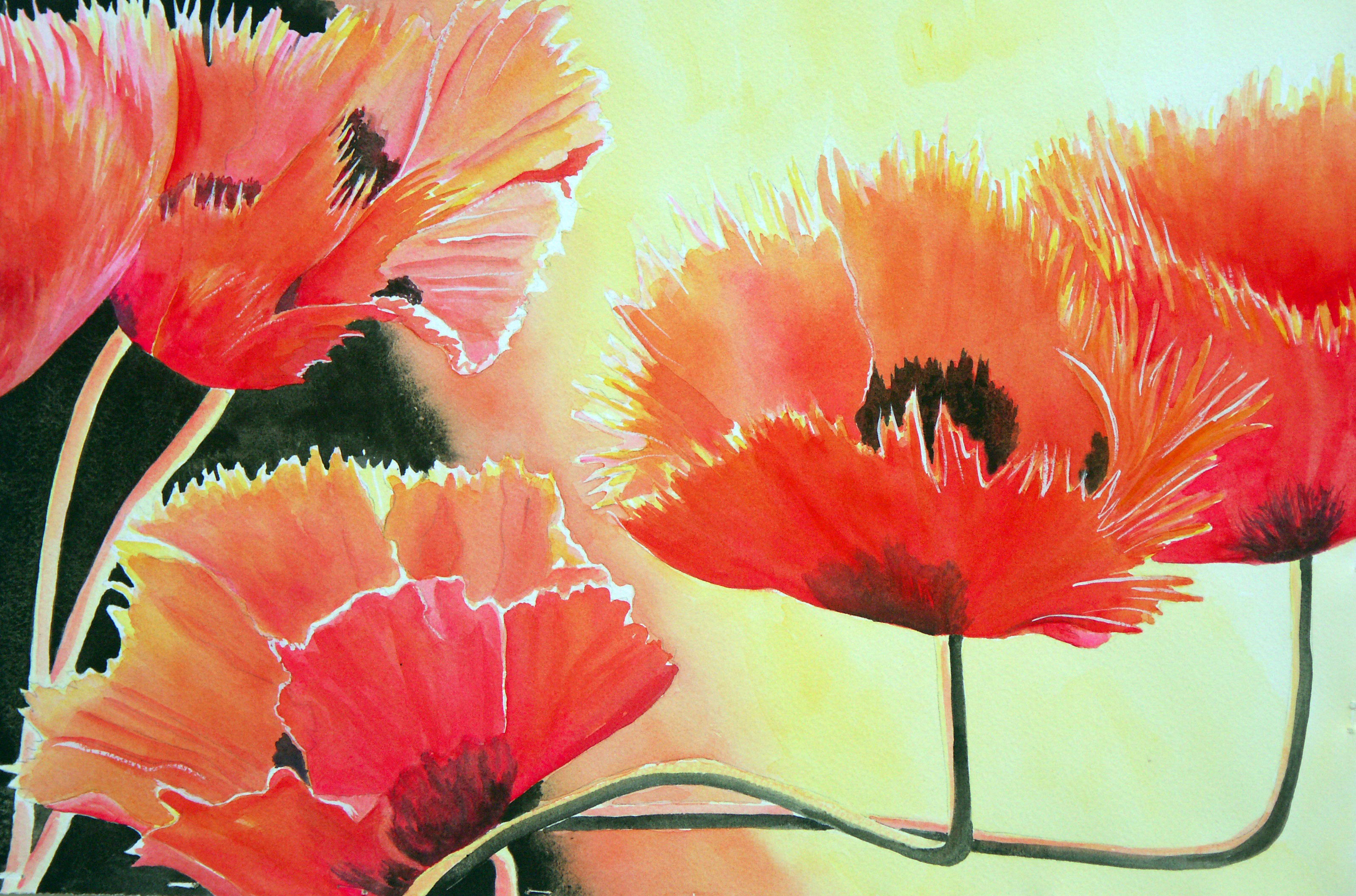 Red Hot Poppies